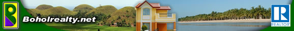 Bohol Realty - Panglao beach property - affordable house and Lot - overlooking view - commercial property - investment property - Bohol beach property